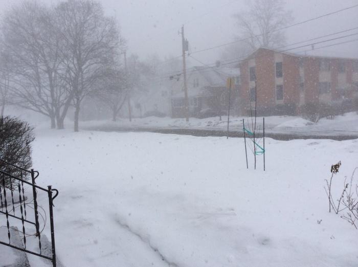 Snow falls in Syracuse, N.Y.