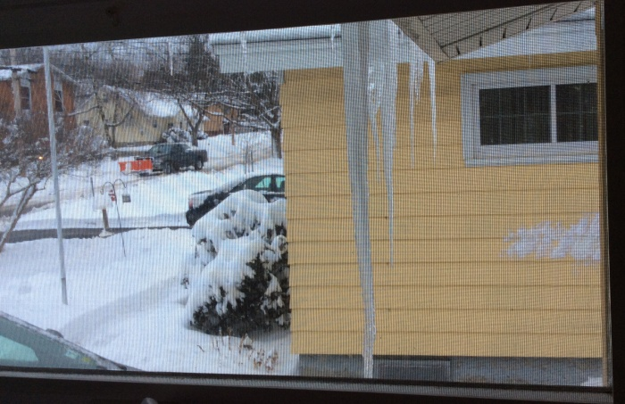 The sight outside our side kitchen window this morning of Friday, March 14, in Syracuse, N.Y.