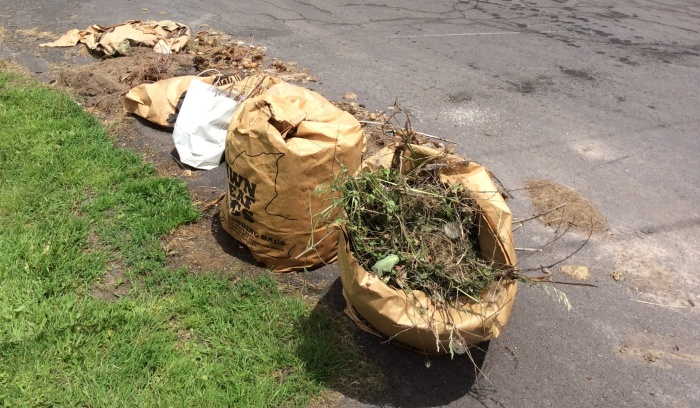 And the clippings still await pickup by the city crew.