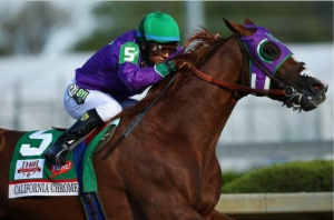 California Chrome will try to run down a piece of history June 7 in the Preakness. (Photo from Getty Images)