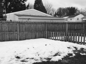Piles in the backyard.