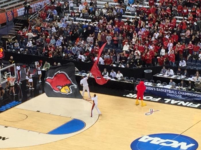 Louisville Cardinal zoomed.
