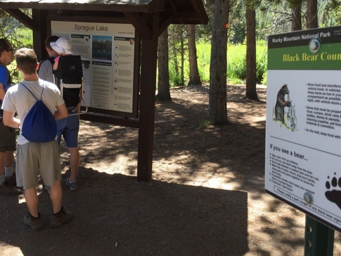 What to do if you see a bear. Really.