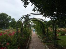 A path to beauty.