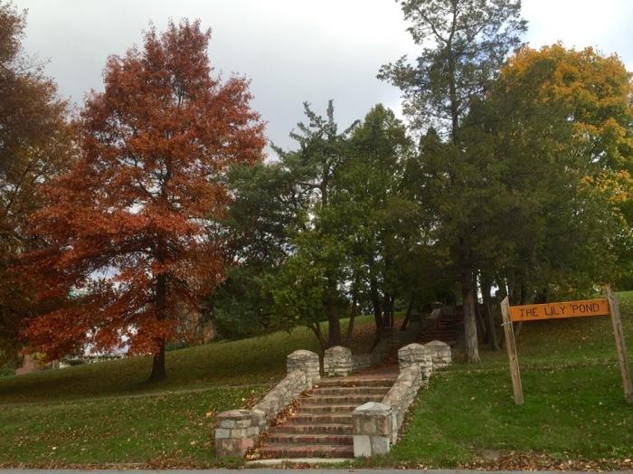 Leading to rustic beauty in Syracuse, N.Y.