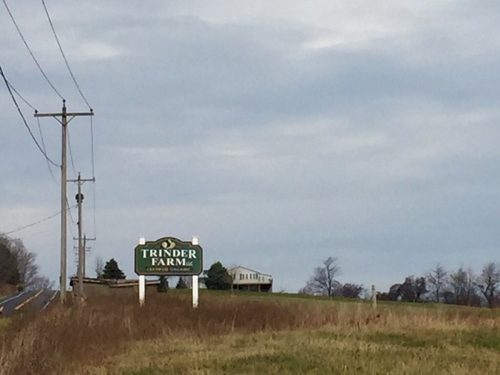 Lovely premise southeast of Syracuse.