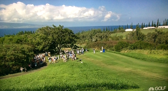 The green, green grass of Maui in January. (From my wide-screen)
