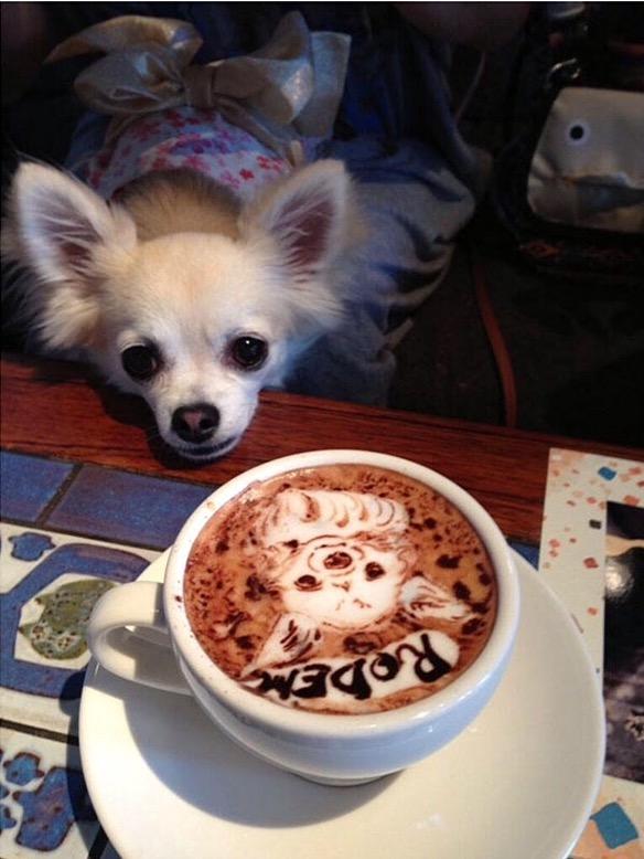 Coffee, Anyone