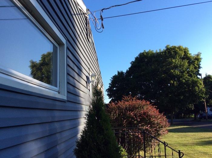 Blue house, white trim, red burning bush.