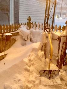 Where I stored the shovels.