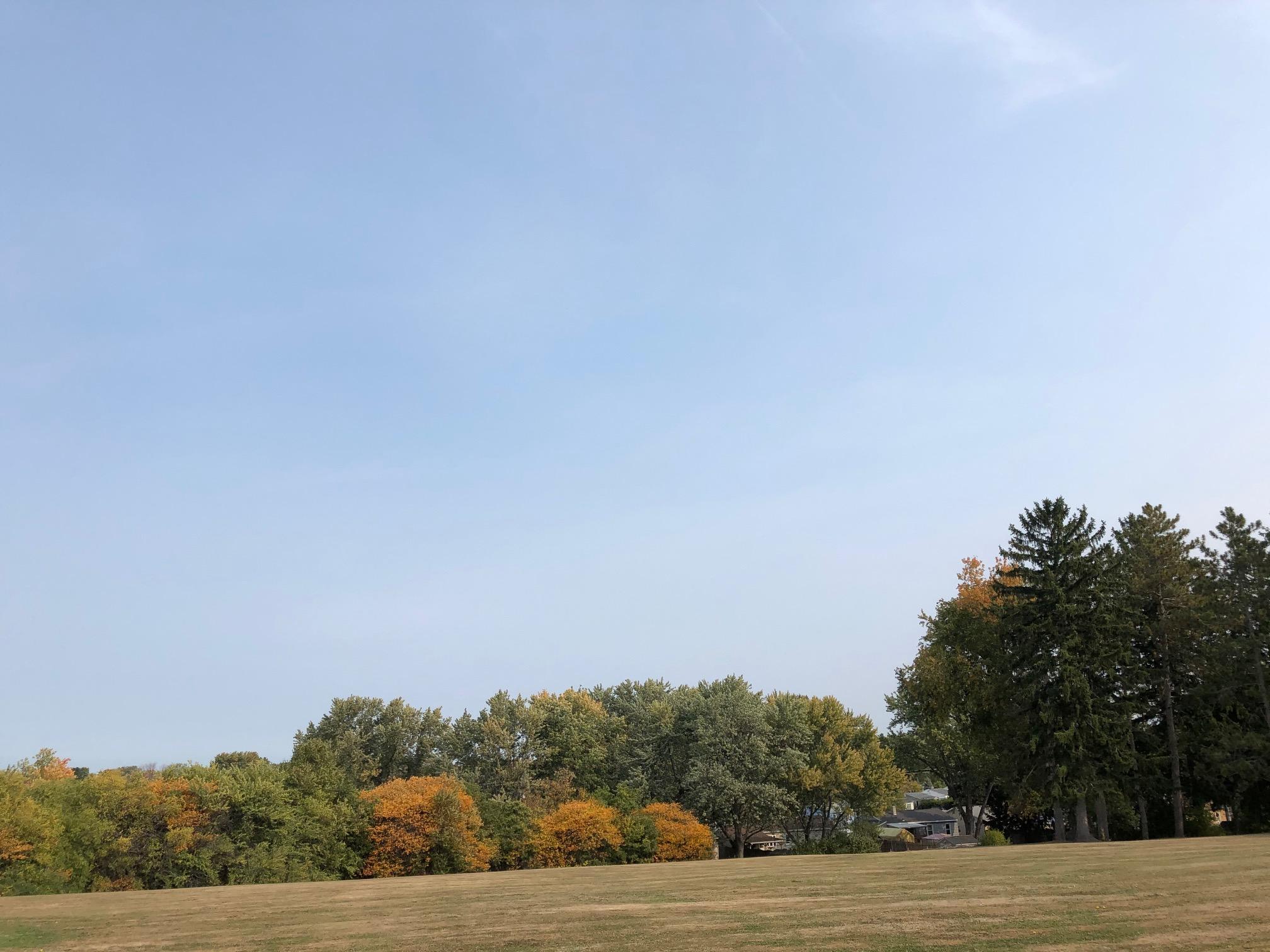 Neighborhood leaves